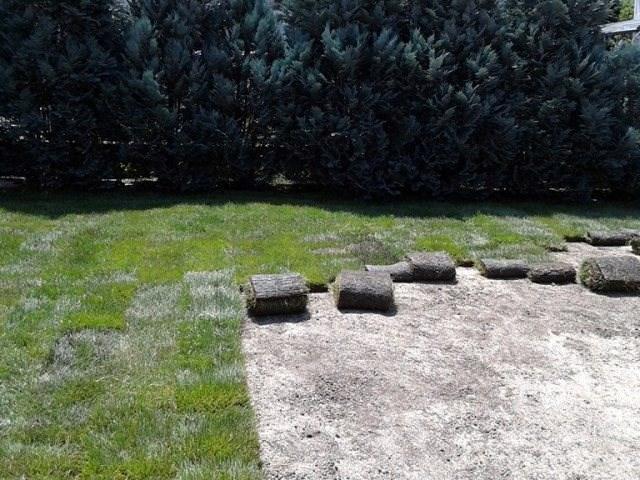 Busen travnjak