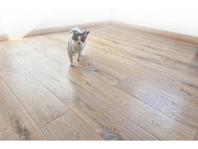 Parket - drvo HRAST- Rustik - vrsta parketa: troslojni parket; sastav podne obloge: planka; površinska obrada: četkan/brušen; završna obrada: bojen/uljen; debljina: 14 mm širina: 180 mm; dužina:1000-2200 mm; sistem spajanja: pero-utor; podno grejanje: primeren