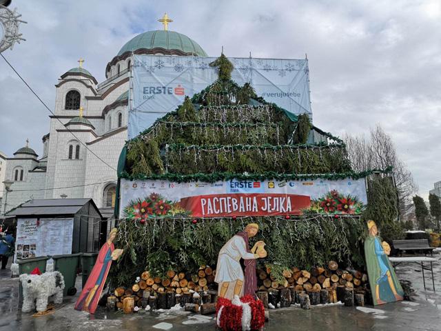 Raspevana jelka-Hram Svetog Save-Beograd