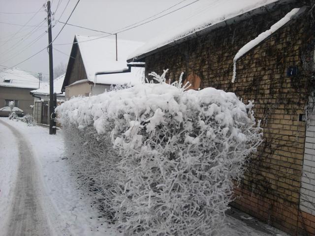 Leti čudesna, zimi čarobna