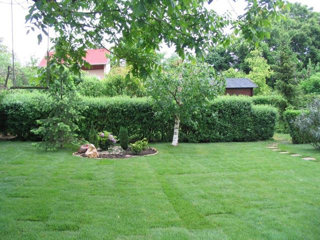 Razdvajanje placa, okvir za dvorište