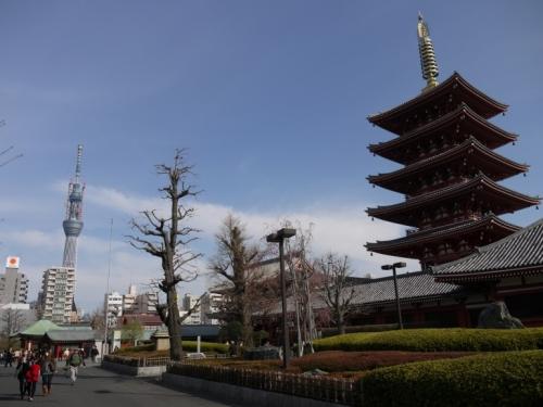 Tajne nebeskog drveta (sky tree) - druga po visini struktura na svetu