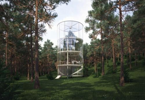 Transparentne kuće  Tree_in_the_house-3